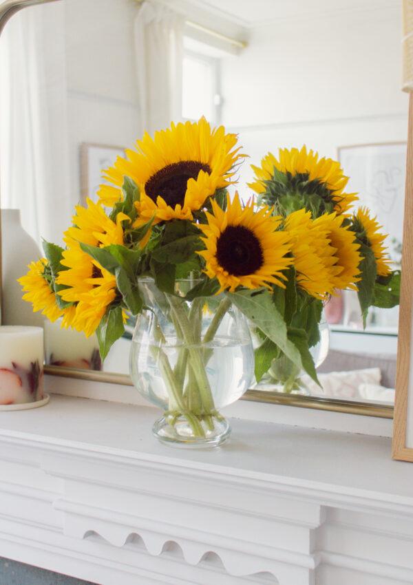 Best Flowers to Buy in Summer