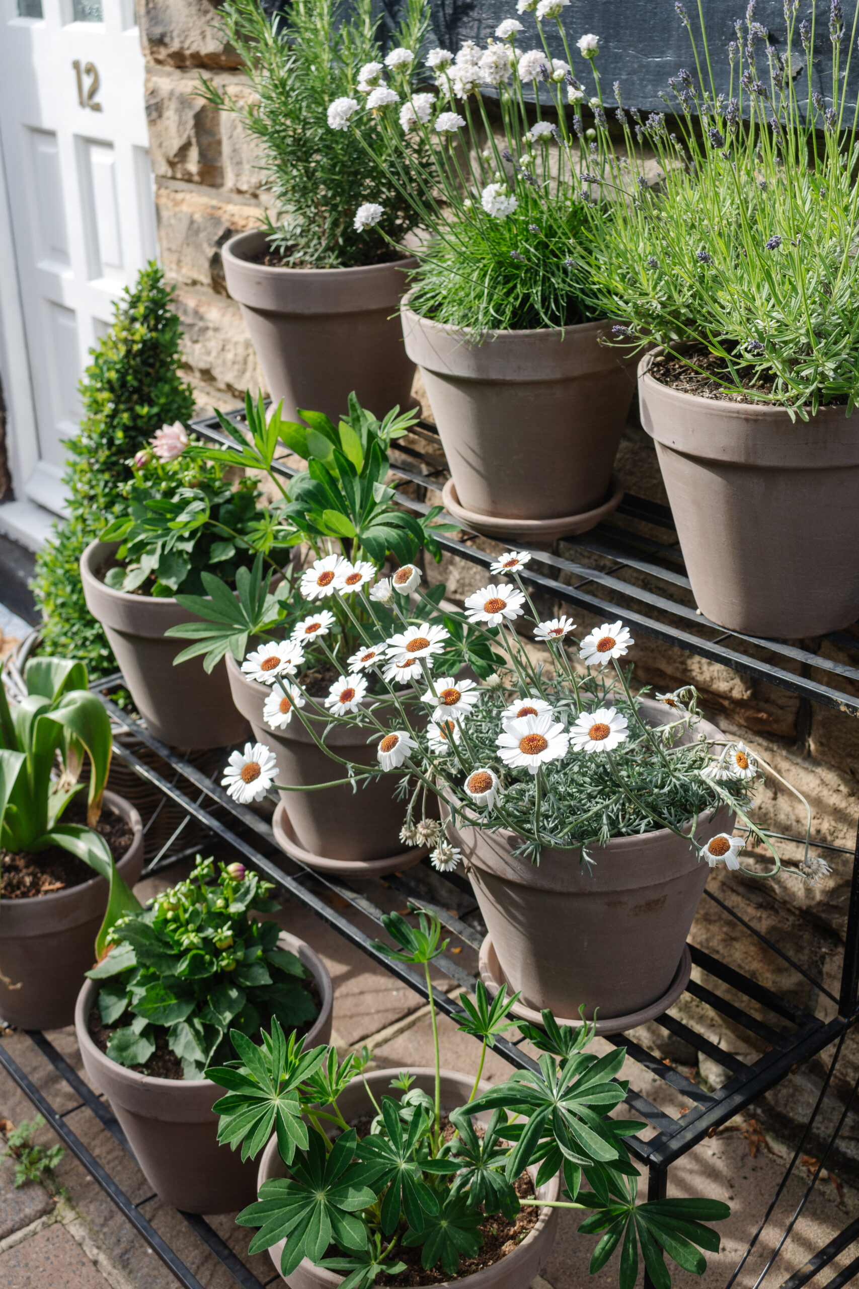an edited lifestyle interiors garden courtyard plant stand